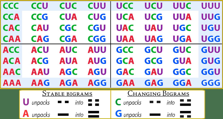 12-RNA-decoder