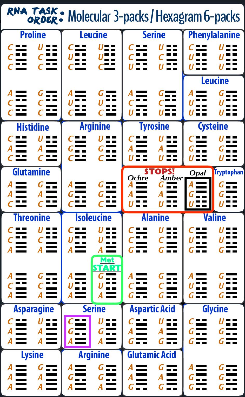 15-RNA-Task-hexagrams