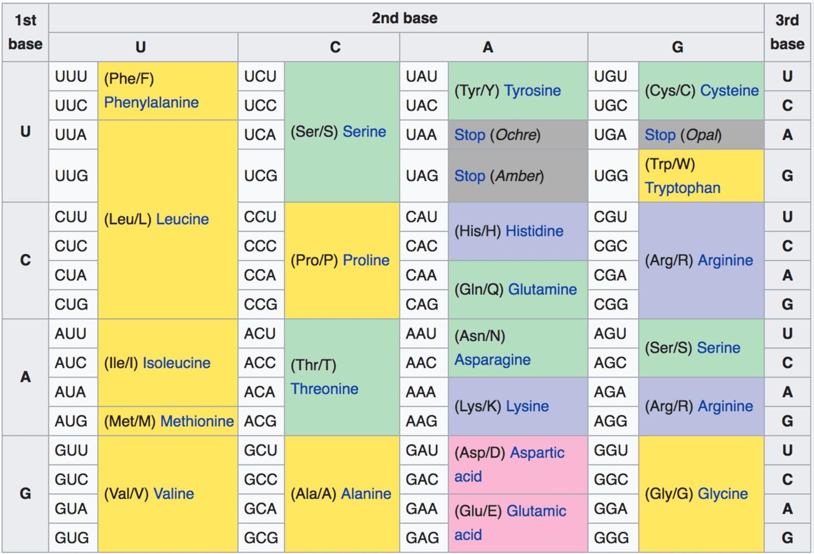 8-RNA-Wiki