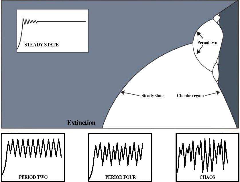 Figure 3: The bifurcation diagram for the population equation<br> (James Gleick,<em>Chaos: Making a New Science</em> pg. 71)